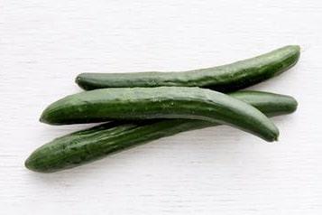 bio Salatgurke kaufen