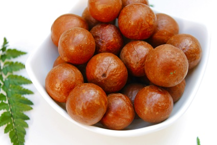 macadamia nüsse kaufen