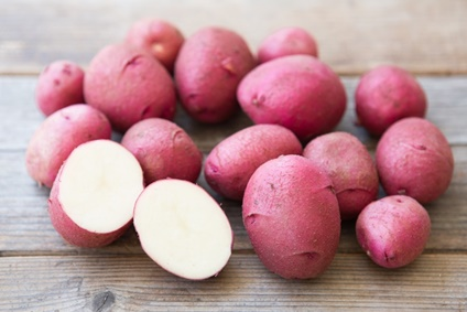 Kartoffel Laura kaufen