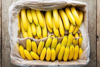bio bananen fair trade