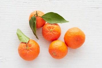 bio clementinen bestellen