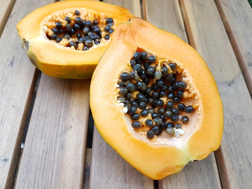 "Bio Papaya ""Eden"""