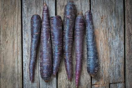 karotte deep purple kaufen