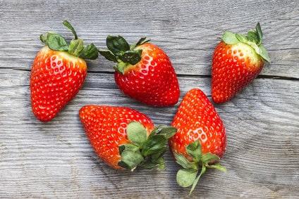 bio erdbeeren kaufen