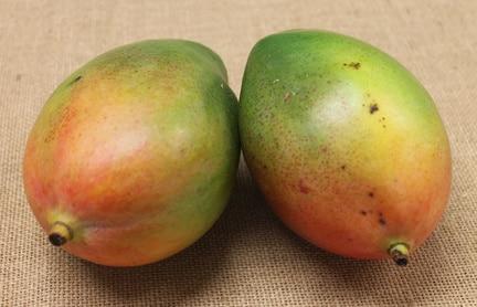 """Mango """"Keitt"""""""