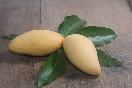 """Mango """"Nam Dok Mai"""" Kipepeo Flugware"""