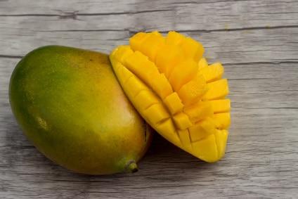 Mango amelie kaufen