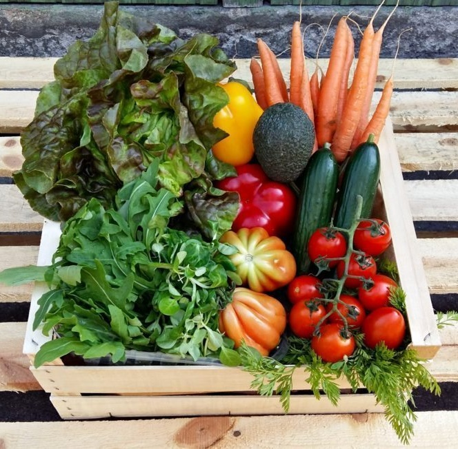 Bio Fruitlover Raw Veggie Box