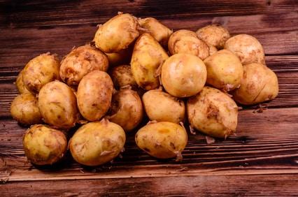 """Kartoffeln """"Sieglinde"""" neue Ernte"""