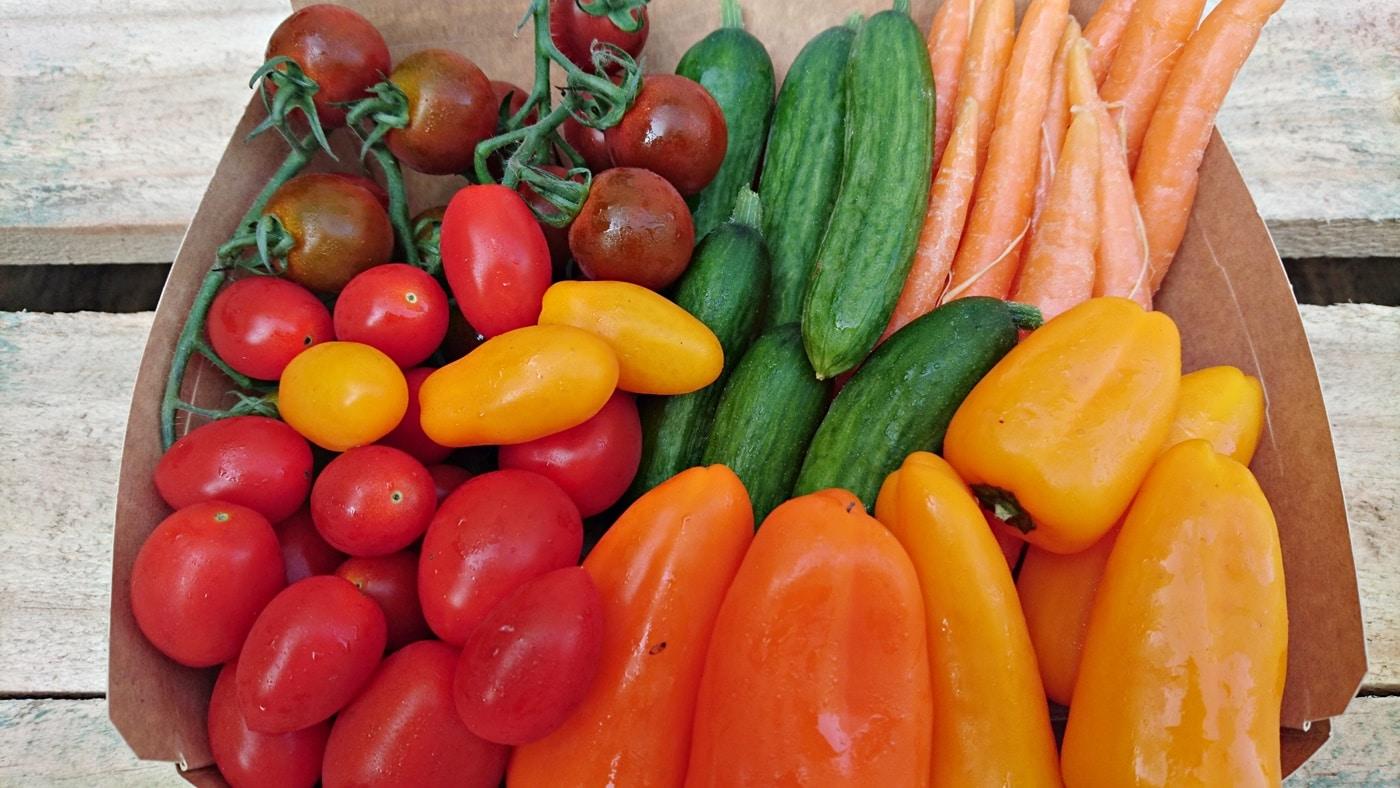 Bio Snackgemüse