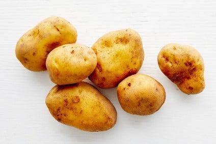 bio kartoffel agria