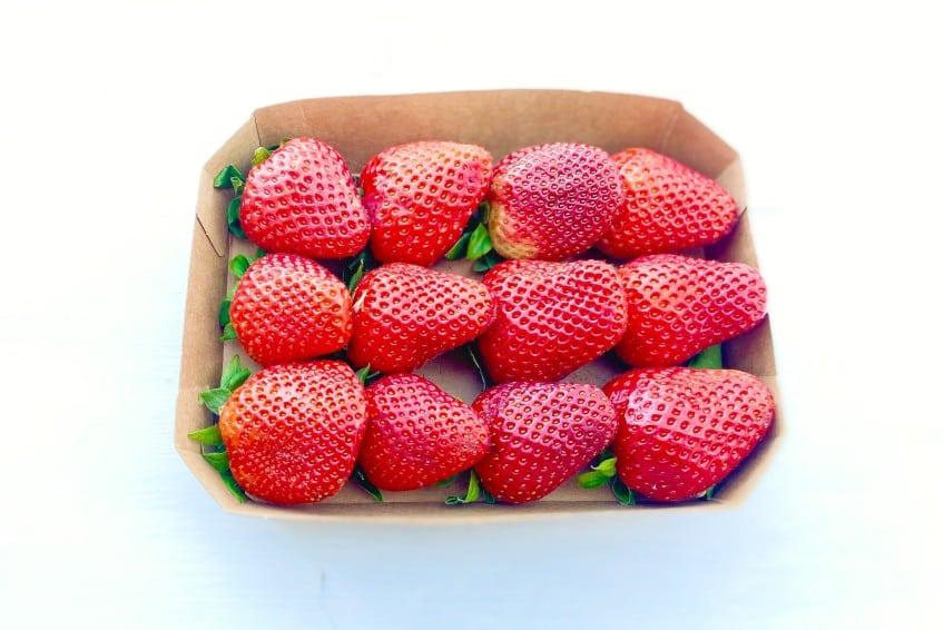bio erdbeeren bestellen