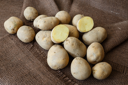 bio kartoffeln afra kaufen