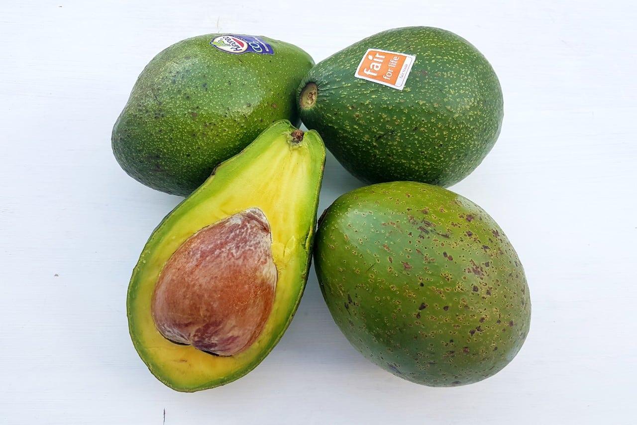bio avocado kaufen