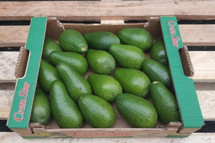 avocado fierte kaufen