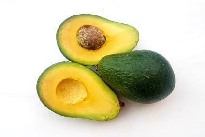 avocado torrox bestellen