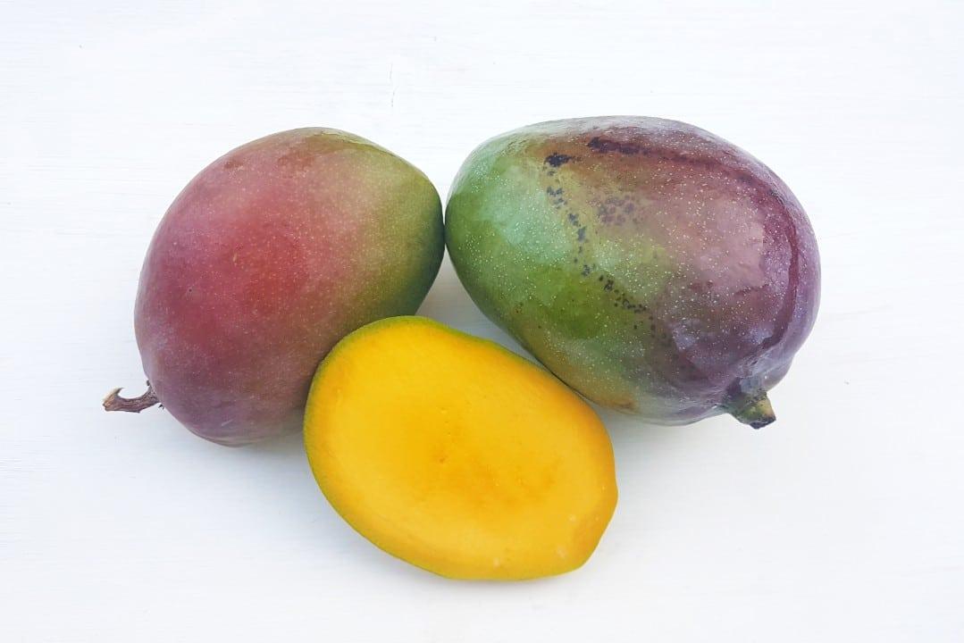 mango zill kaufen