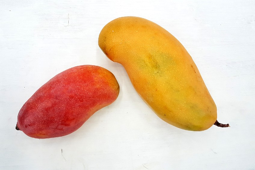 mangos aus spanien kaufen