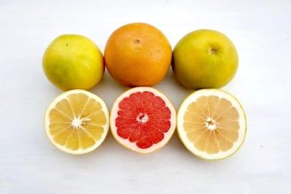 bio orangen bestellen