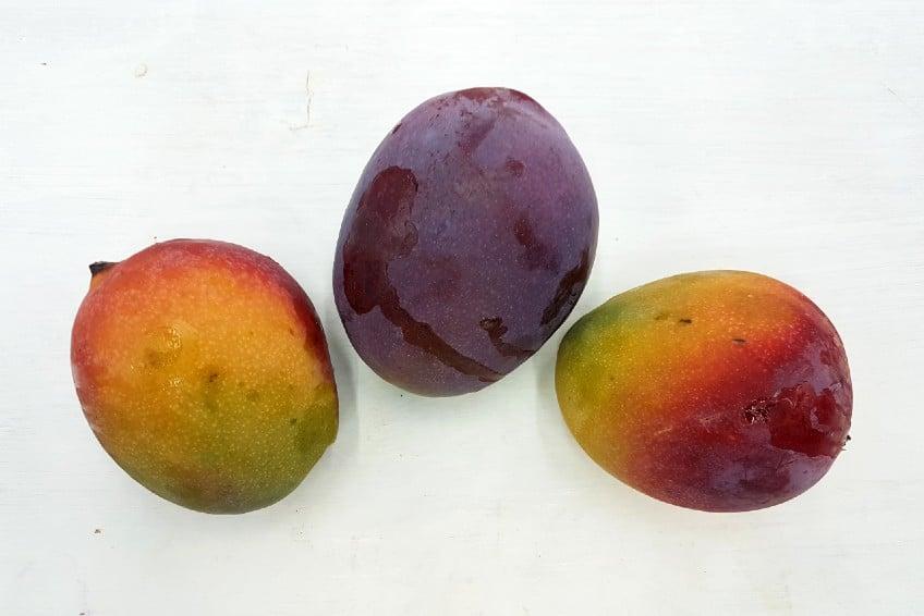 bio mango sensacion kaufen