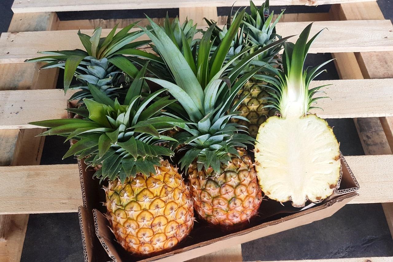 ananas flugware kaufen