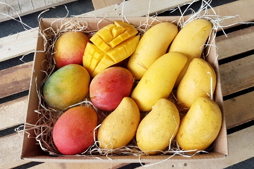 flugmangos kaufen