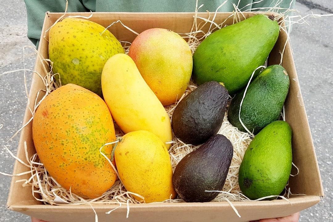tropenfrüchte bestellen