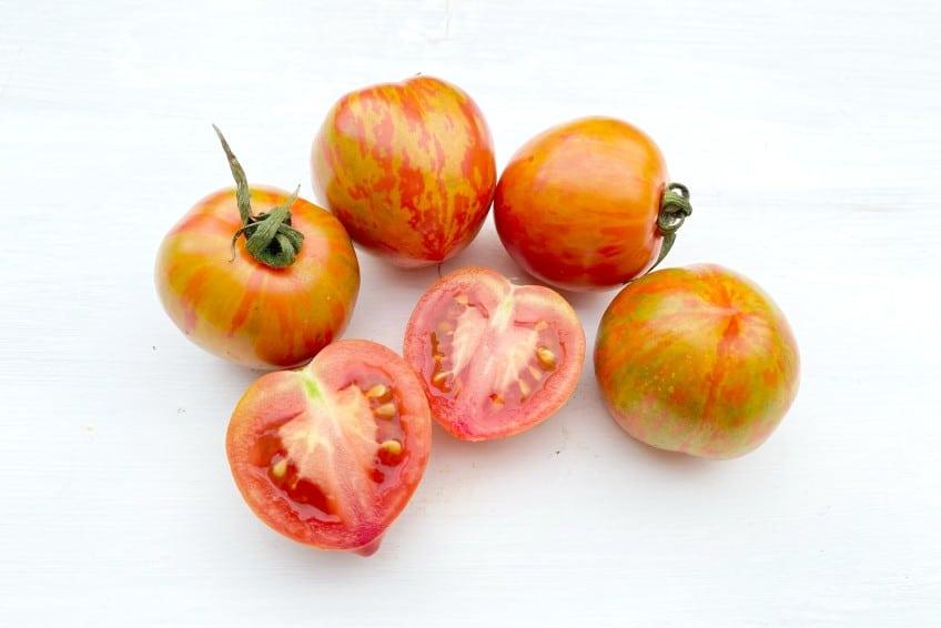 tomate rotes zebra kaufen