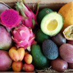 tropenfrüchte versand