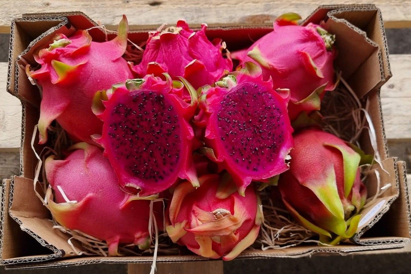drachenfrucht pink uafen