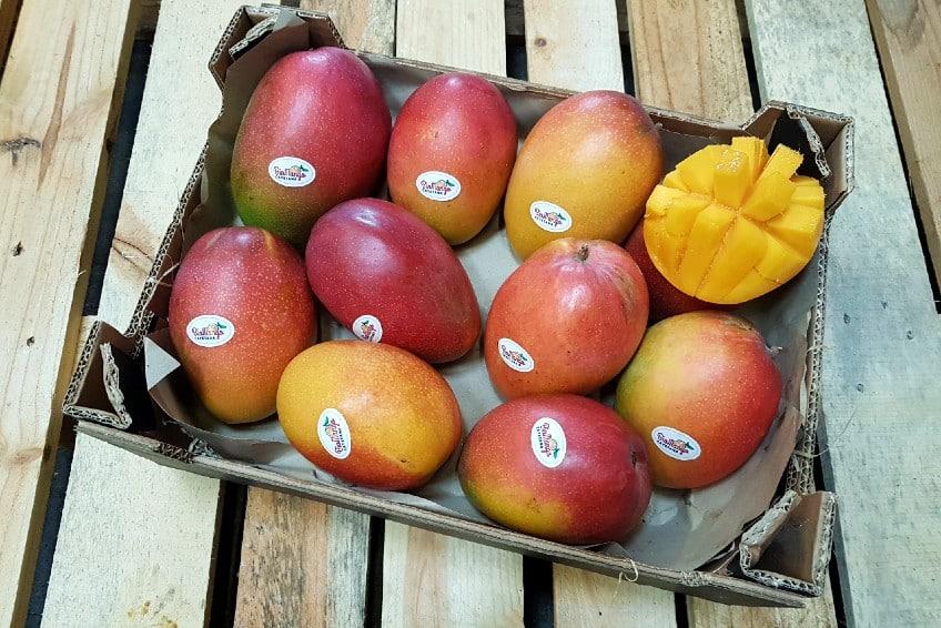 bio mango irwin kaufen