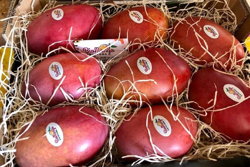 mango aus spanien kaufen