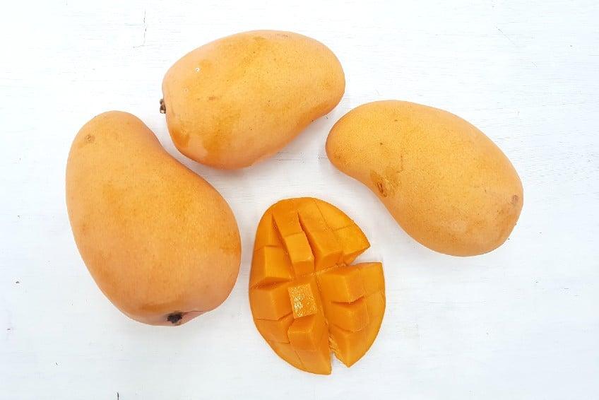 honigmango ataulfo kaufen