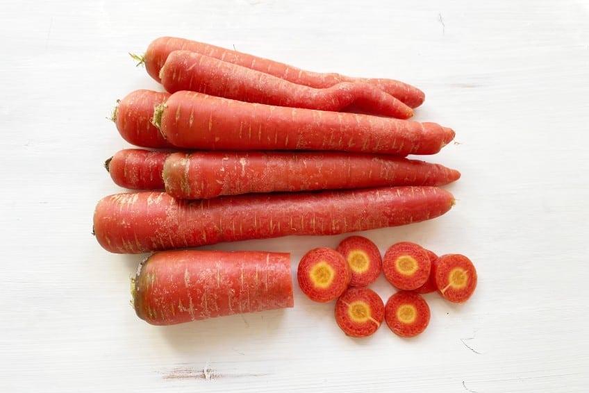 bio karotten rot kaufen
